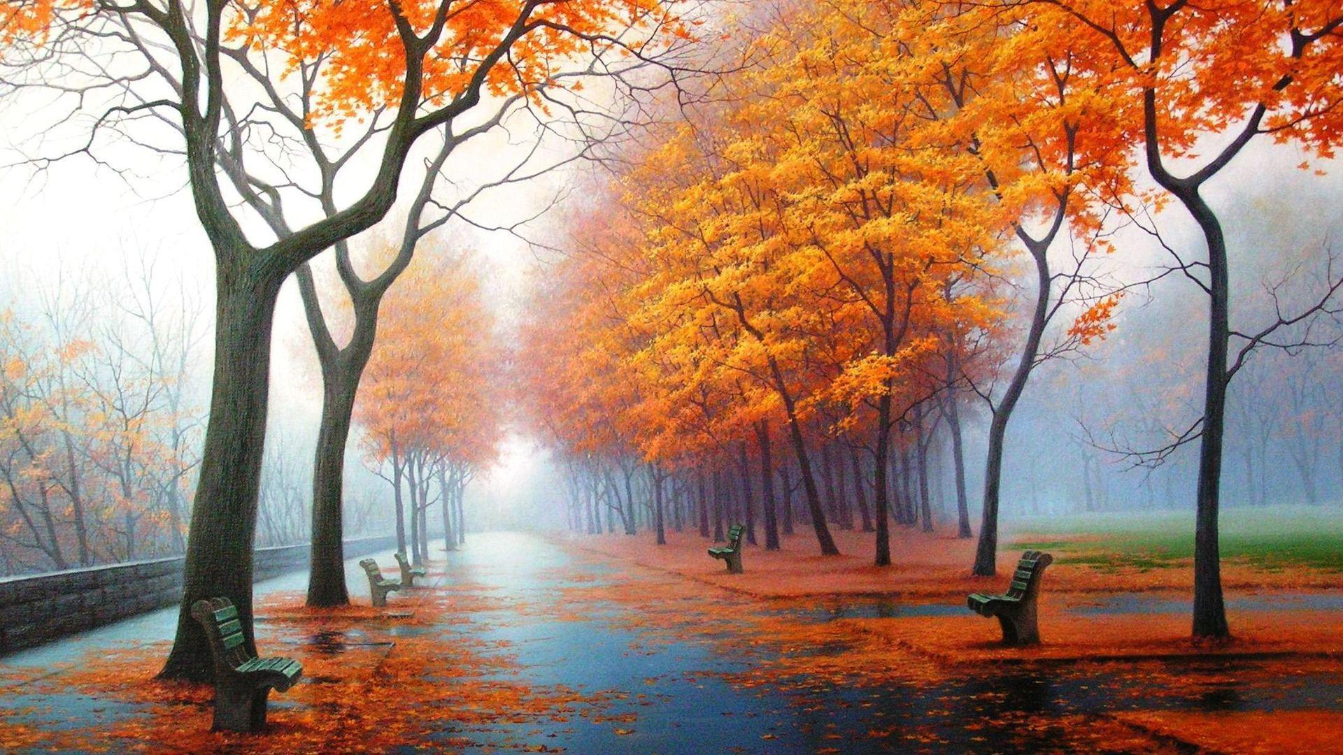 Wallpaper Fall Pictures – Captivating Wallpaper Designs and Colorful Images